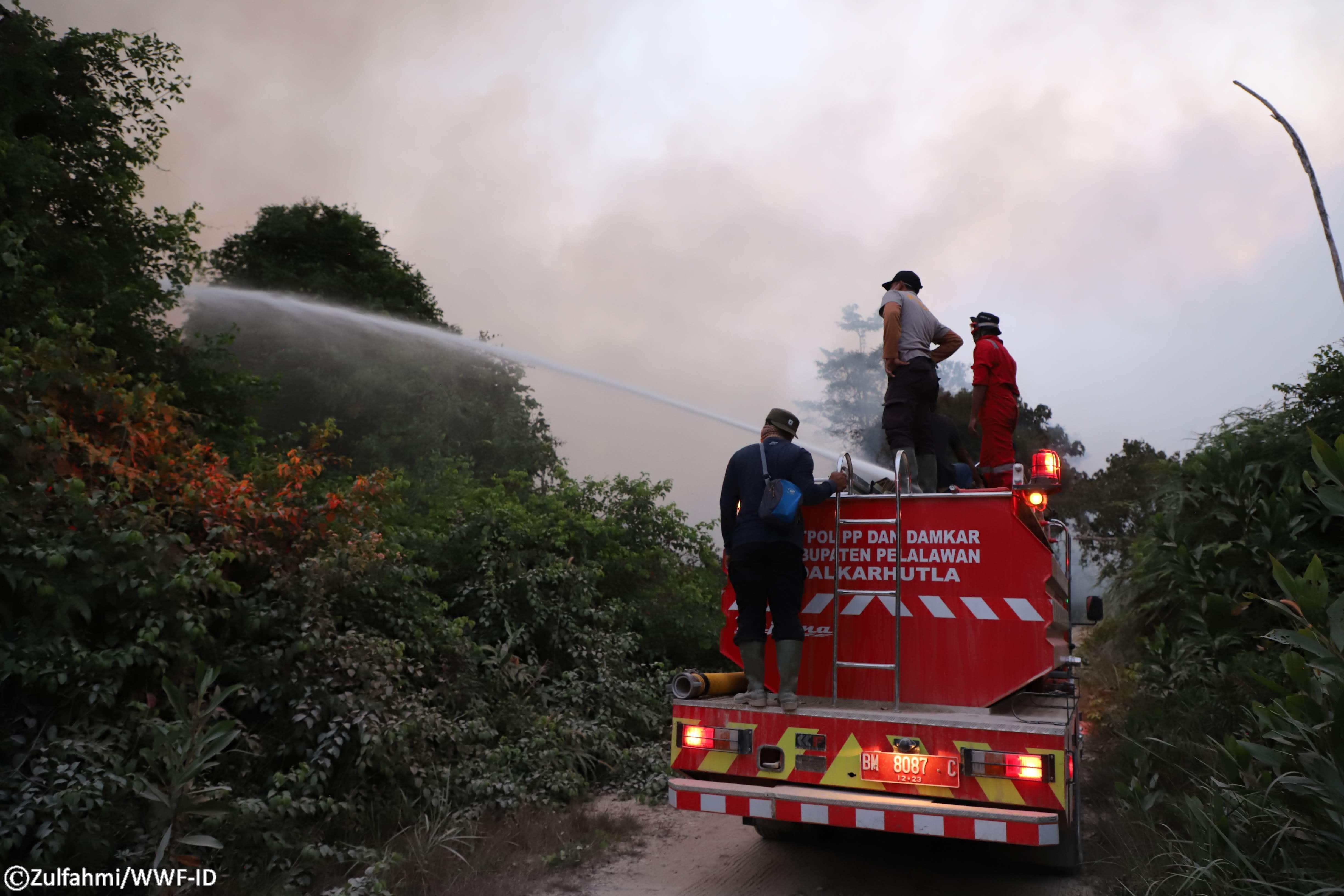 Tim gabungan Tesso Nilo sedang beraksi memadamkan api