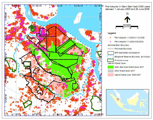 Map 1.—Fire hotspots in Giam Siak Kecil (GSK) area between 1 January 2005 and 30 June 2009. In total 950 hotspots were counted in areas where there used to be natural forest in 1996 in GSK (pink and green area).