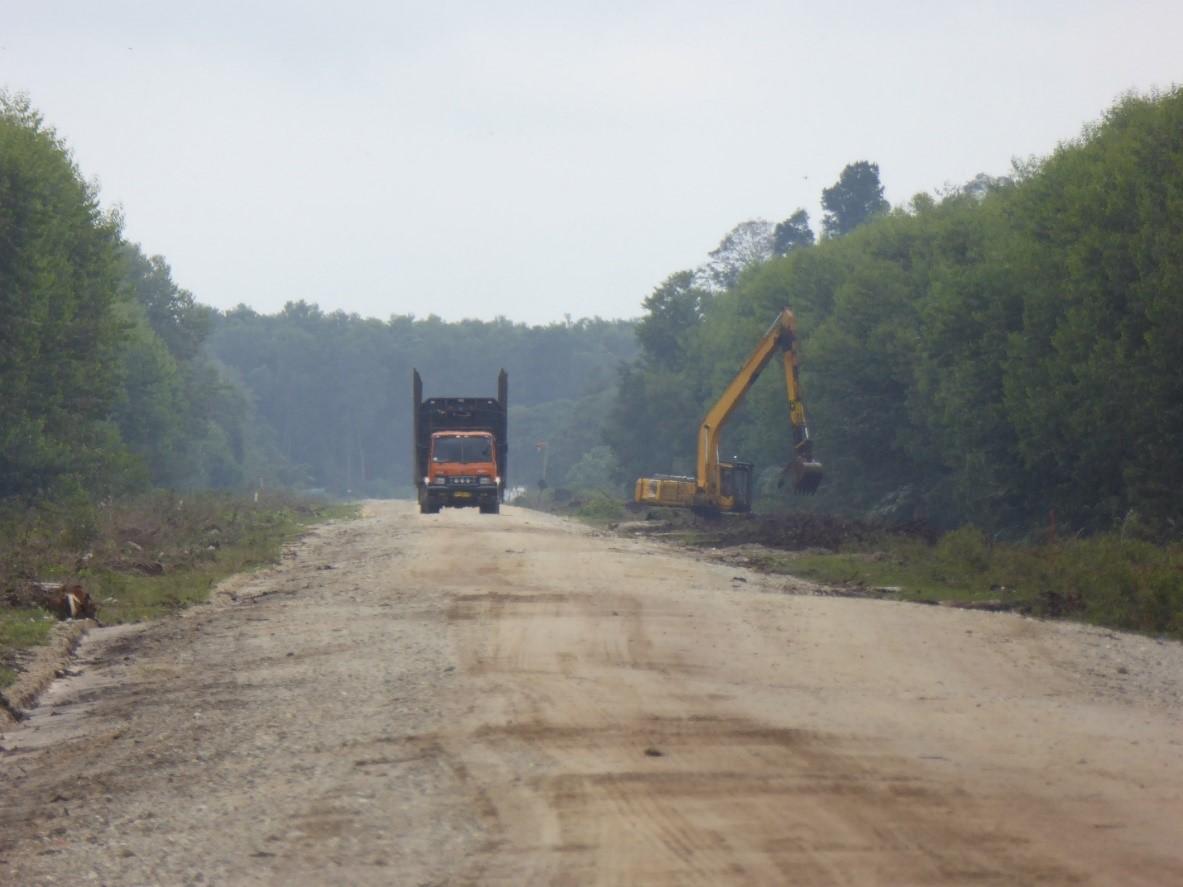 Rimba Mutiara Permai in Kerumutan landscape